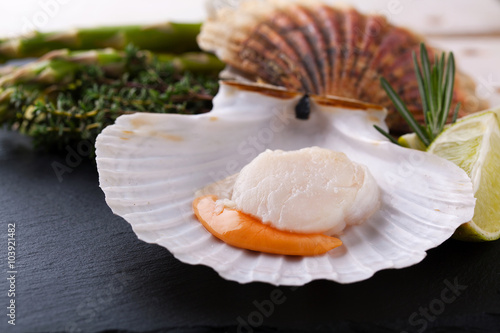 Bilden på canvas Raw fresh scallops in the shell close up in a black plate with l