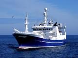 Statek rybacki P1, statek rybacki w trakcie przystąpienia do lądowania ryb.