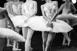 Hands of ballerinas. Hands of ballerinas. Ballet statement. Great ballerinas. Ballerinas in the movement. - 104016273