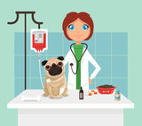 Veterinarian. Vetor flat illustration