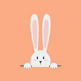 White easter rabbit