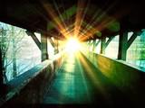 Brücke ins Licht - 104113477