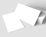 Blank Business Cards mockup.