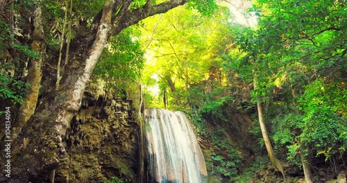 In de dag Bamboo Deep jungle rain forest tropical waterfall and sunlight shines through leaves