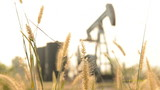 pumpjack at an oil drilling site with grass at forground