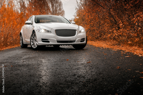 whtie-luksusowy-samochod-pozostaje-na-mokrej-drodze-asfaltowej-w-autum
