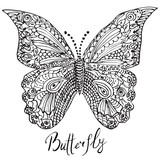 Ornamental hand drawn sketch of Butterfly in zentangle style. vector illustration with ornament, isolated
