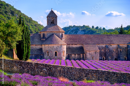 Lavender fields at Senanque monastery, Provence, France - 104224444