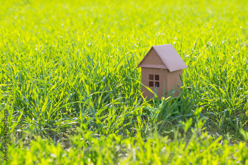 Poster paper house on spring grass