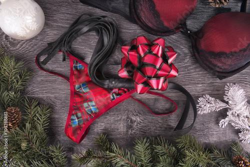 Sexy present for Christmas