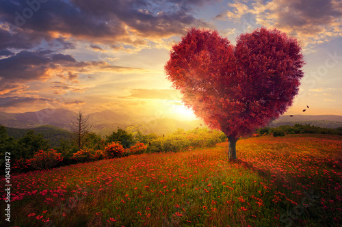 Red heart shaped tree Plakat