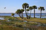 Wasser und Seen im Wildpark Orlando