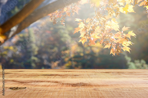 Wooden desk and blur autumn forest background.