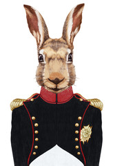 Portrait of Rabbit in military uniform. Hand-drawn illustration, digitally colored.