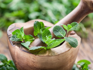Fresh mint, wooden mortar and pestle.
