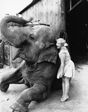 Profile of a young woman hugging an elephant  - 104443691
