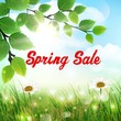 Natural background with word spring sale