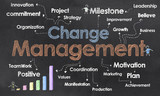 Change Management Business Terms
