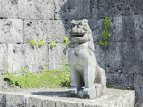 This is a Shisa and a amulet, You can find it in OKINAWA JAPAN.