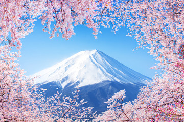 Fujiyama in Japan zur Kirschblüte