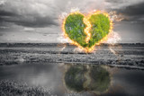 Broken heart tree - 104587282