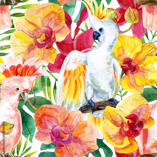 watercolor Australian Cockatoo seamless pattern - 104646448