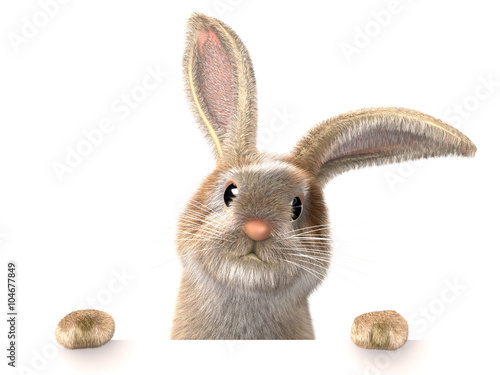 Zdjęcia na płótnie, fototapety, obrazy : An Easter funny rabbit overlooking