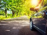 Fototapety Car on asphalt road in summer