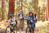 Fototapety African American Family Cycling Through Fall Woodland