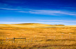 Autumn colors on Rural grasslands, Colorado, United States