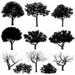 Set of trees in silhouettes. Also in vector format. Create many more shapes of trees from leaves and trees bottom row.