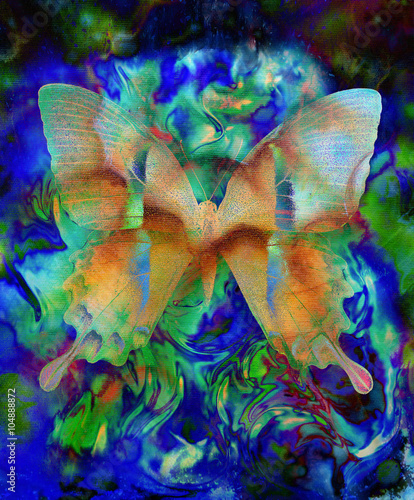 Keuken foto achterwand Vlinders in Grunge illustration of a butterfly, mixed medium, abstract color background