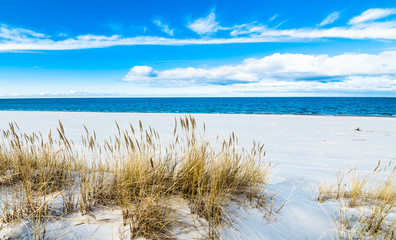 Sea landscape with sandy dunes and grass © alicja neumiler