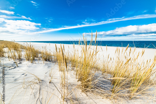 Fototapety, obrazy : Sea landscape with sandy dunes and grass
