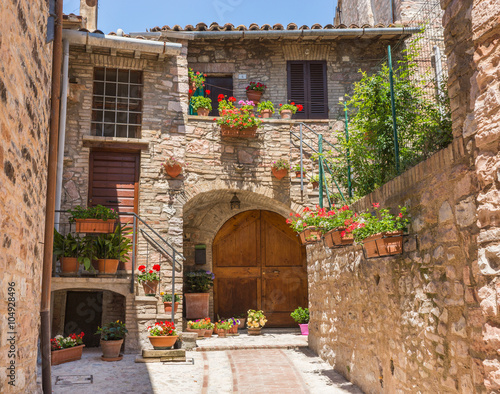 Ingresso romantico di casa storica con vasi di fiori for Piccoli piani di casa storica