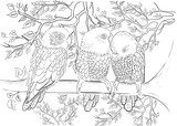 Fototapety Hand drawn ink pattern. Coloring book Coloring for adult
