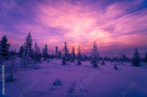 Staande foto Snoeien Winter landscape with forest, cloudy sky and sunset