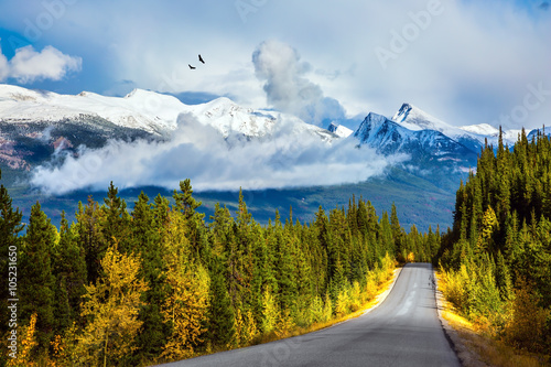 Fototapeta . Canadian Rockies in Fine day