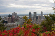 Montreal skyline in the fall