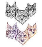 Tattoo. Wolf, lynx, and fox - 105324237
