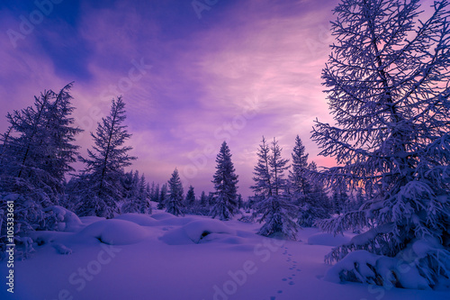 Poster Snoeien Winter landscape with forest, cloudy sky and sunset