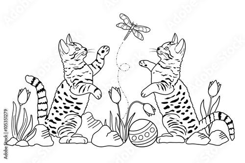 GamesAgeddon - Katzen (Malvorlage) - Lizenzfreie Fotos, Vektoren und ...