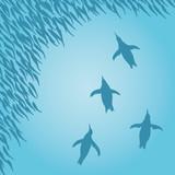 魚群とペンギン