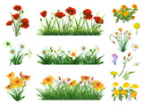Fototapety Flowers and grass set of vector elements.