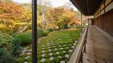 京都東福寺の秋景色