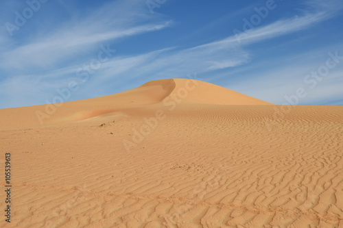 Poster Sandwüste