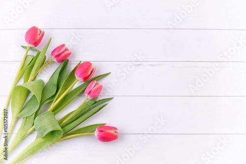 Tulip. Red tulips, bouquet of tulips
