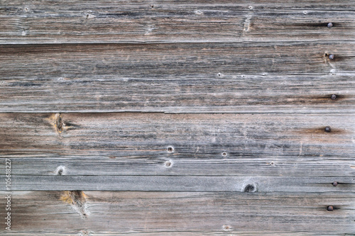 Fototapeta surface of old wood background