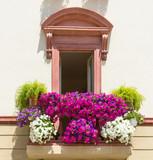 Balcone con fiori di petunia - 105624848