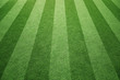 Sunny socccer or rugby artificial green grass field background.
